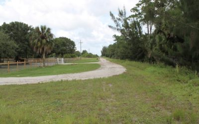 REAL ESTATE AUCTION:January 8, 2019Former INEOS-New Planet Biorefinery | 75.41± Acres of Bare LandVero Beach, FL